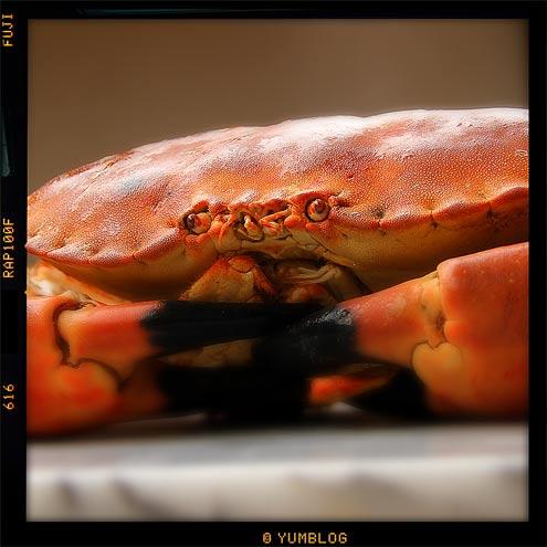 Crab tart