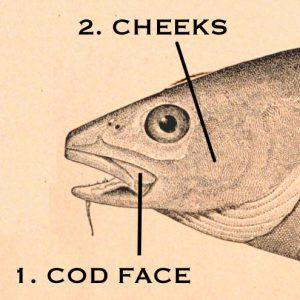 Cod face