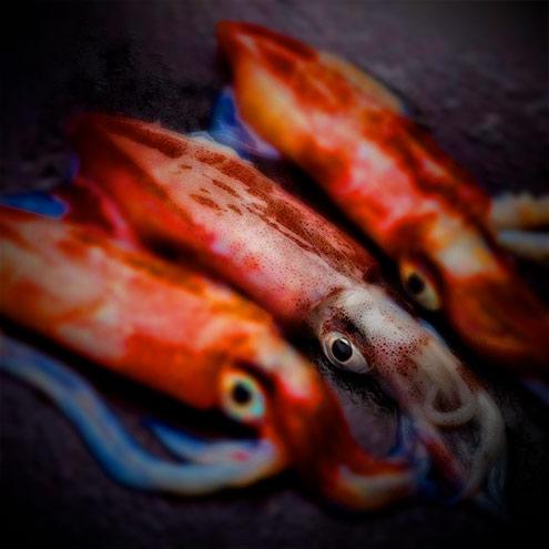 Calamari with toasted rice